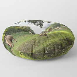 a momentary lapse of reason Floor Pillow
