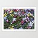 """""""Strange Flowers"""" by juliantgardea"""