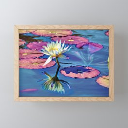 Water Lily In The Pond Framed Mini Art Print