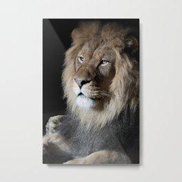 Portrait of a King Metal Print