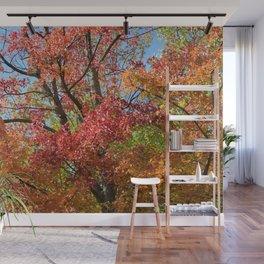 Photo 55 Autumn Fall Wall Mural