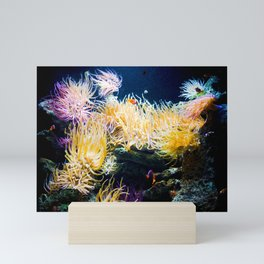 Underwater Sea Anemone [Saltwater Nemo Fish Photography]  Mini Art Print