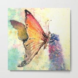 Butterfly on purple flower Metal Print