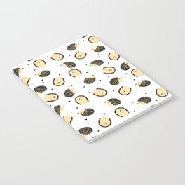 hedgegog fields Notebook