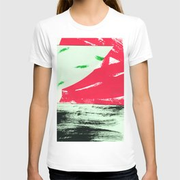 watermelon collage T-shirt