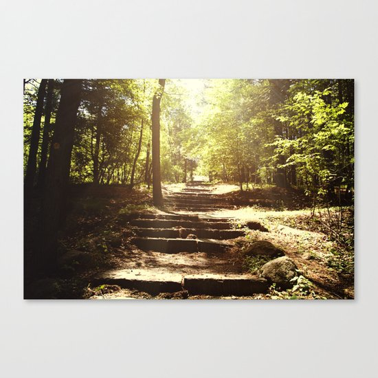 Up the Down Stairs Canvas Print