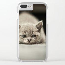sleepy british kitten Clear iPhone Case