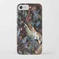 sparrow iPhone & iPod Cases featuring Sparrow by Elaine C Manley