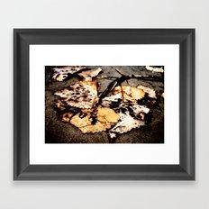 Wet Leaves Framed Art Print