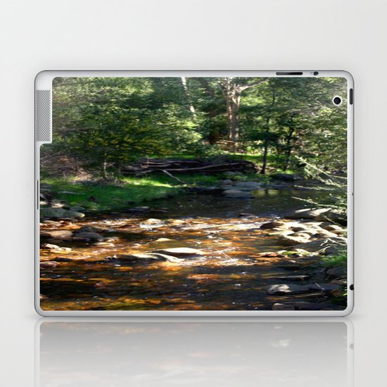 Stoney Creek Laptop & iPad Skin
