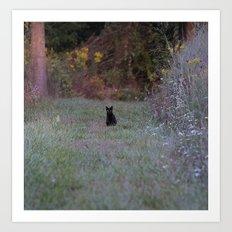 Autumn Black Cat Yellow Eyes Art Print
