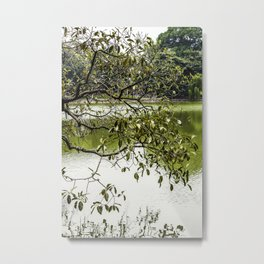 Tree Branches Hanging over the Emerald Green Colored Hoan Kiem Lake in Hanoi, Vietnam Metal Print