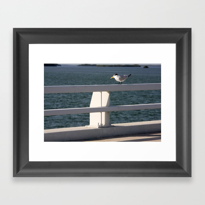 Summertime and the livin is easy  Framed Art Print