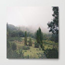 (fog meadow) Metal Print