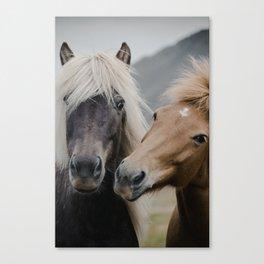 Happy Horses | Colour Canvas Print