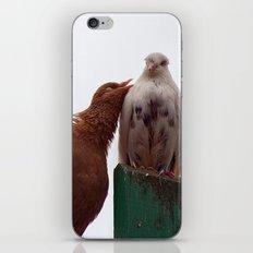 Love song 6529 iPhone & iPod Skin