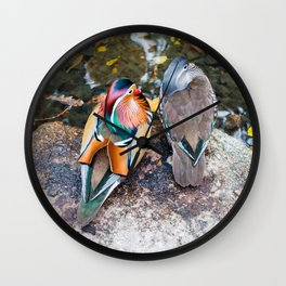 Mandarin ducks Wall Clock
