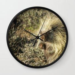 Cuddly Cute but Sharp Like a Needle Wall Clock