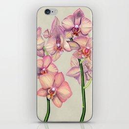 Pink Ladies iPhone Skin
