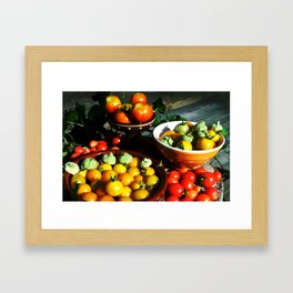 Yellow and red tomatoes II Framed Art Print