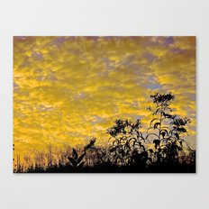 Evening Perfection Canvas Print