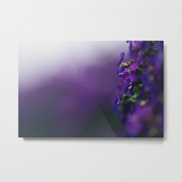 Purple backdrop Metal Print