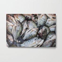 Pescados Metal Print