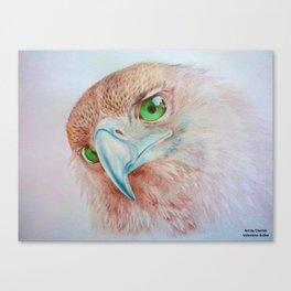 Tasmanian Wedge-Tailed Eagle Canvas Print