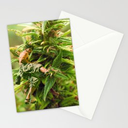 Cannabis Trip Stationery Cards