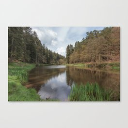 Spring at Soudley Ponds Canvas Print