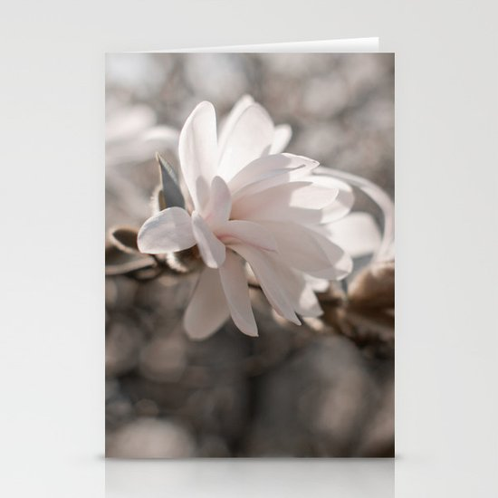 Magnolia Dreaming Stationery Cards