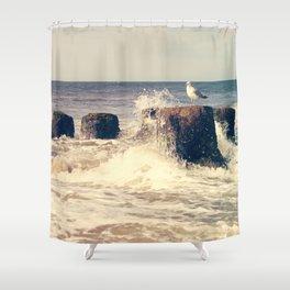 Seagull on stump Shower Curtain