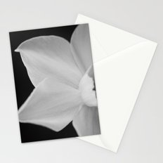 Unveiled Stationery Cards
