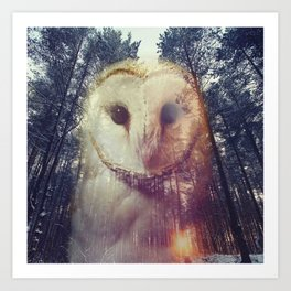Merge owl and forest reflection Art Print