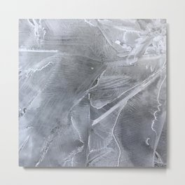 spring puddle frost Metal Print