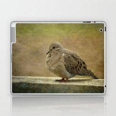 Mourning Dove Laptop & iPad Skin