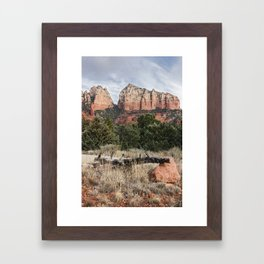 Fallen tree Sedona Arizona Framed Art Print