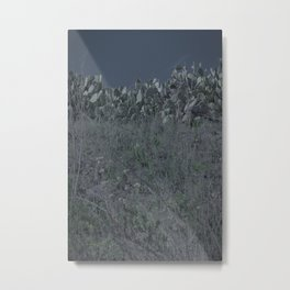 darker night cacti Metal Print