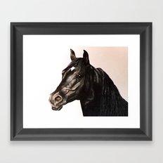 Black Stallion painting Framed Art Print