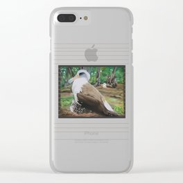 Albatross & Chick Clear iPhone Case