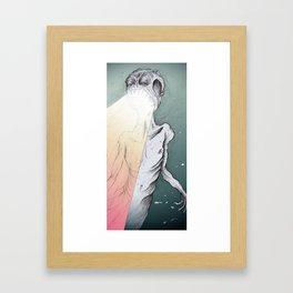 TIME JESUM TRANSUENTUM ET... Framed Art Print