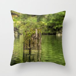 Lonely pine sprout on an old tree trunk in a lake Throw Pillow