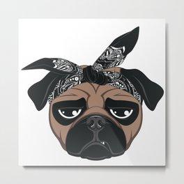 pac pug Metal Print