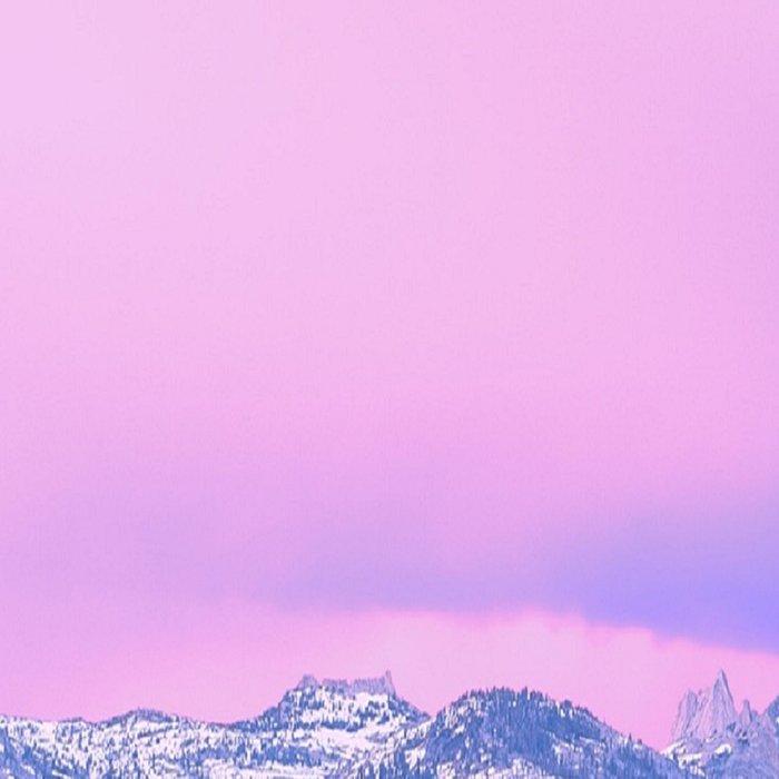 Yosemite National Park Leggings
