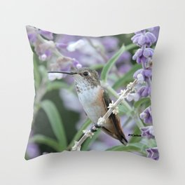 Ms. Hummingbird's Break Time in Mexican Sage Throw Pillow