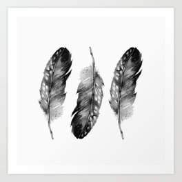 Three Feathers Black And White II Art Print