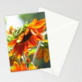 Orangey Sunflower Stationery Cards