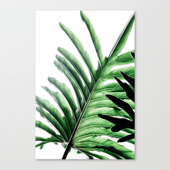 Leaves 2 Canvas Print