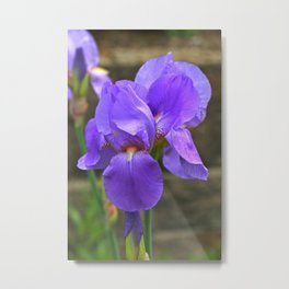 Beauty Of Summer Metal Print