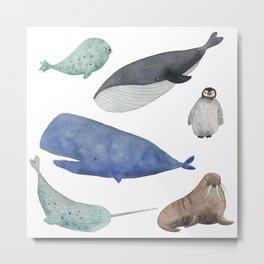 Antartica Metal Print